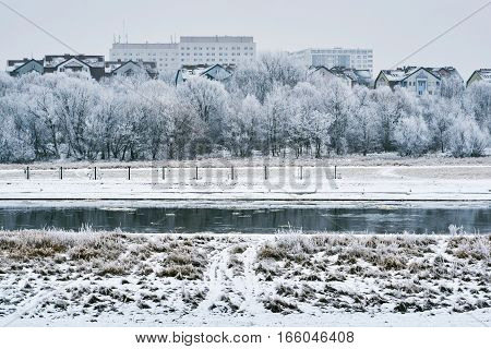 frosted trees on the river Warta in Poznan