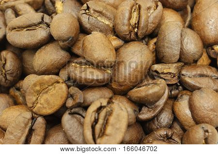 scattered light brown coffee beans, close up macro