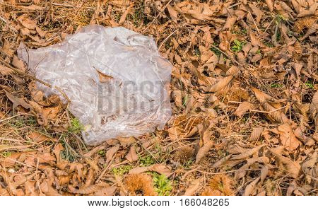 Large piece of plastic left on the ground in a wooded area covered by leaves