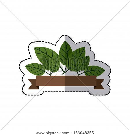 sticker with green leaves and label vector illustration