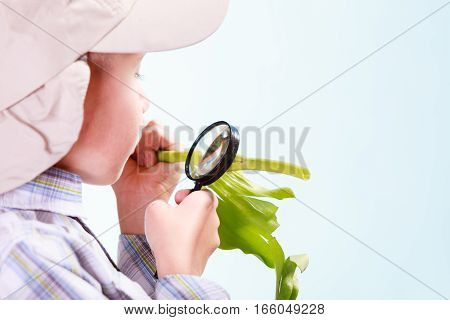 Early education nature and biology. Little boy examine flower with magnifying glass.