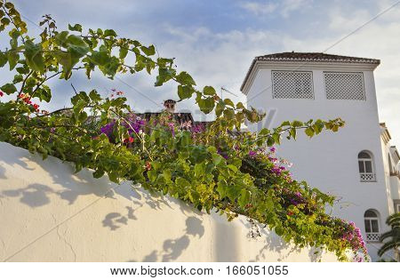 Resort building with traditional andalusian architecture of whitewashed walls and flowers Nerja Spain