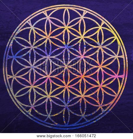 Flower of life. Sacred geometry. Lotus flower. Mandala ornament. Esoteric or spiritual symbol. Buddhism chakra. Geomtrical figure composed of overlapping circles. Decorative motif since ancient times