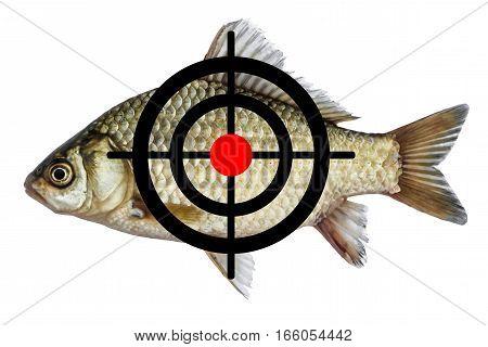 fish icon target spearfishing goal, isolated on white background