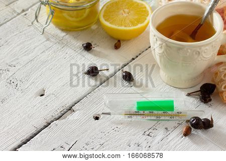 Treatment Of Seasonal Flu - Treatment In Folk Medicine, Thermometer And