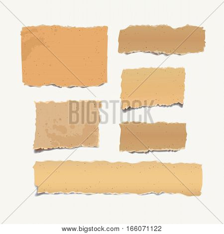 Vintage note papers. Old heavy paper with ragged edge. Torn cardboard. Collection crumpled sheet, ready for your message. Vector illustration. Isolated background. Front view. Top view. Close up. Set
