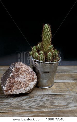 Prickly cactus in a galvanized steel flowerpot next to a pink stone on an old wooden table