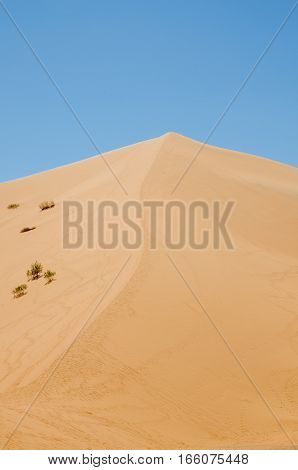 View of the highest sand dune of Erg Chebbi in the Moroccan desert at Merzouga, Morocco, North Africa.