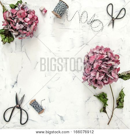 Flat lay with hortensia flowers and scissors on white marble background