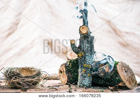 Glass teacups on tree branch hanger near log and nest over burlap background