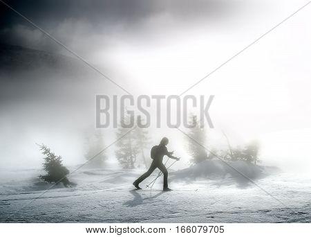 Woman on cross-country skis in Karkonosze mountains Poland