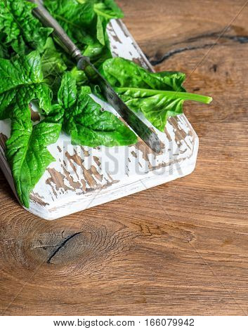 Fresh spinach leaves on wooden background. Healthy organic food