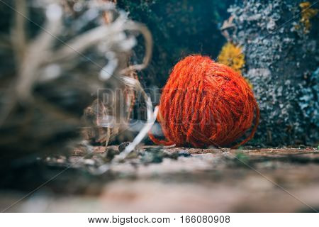 Red wool ball amid natural undressed logs