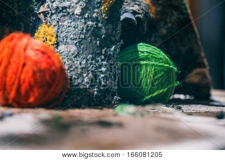 Colorful wool balls amid natural mossed logs. Closeup view