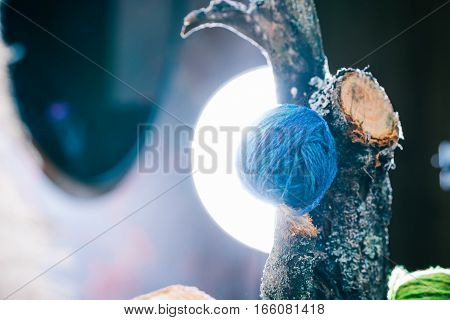 Blue wool ball on natural tree branch in light circle. Close up view
