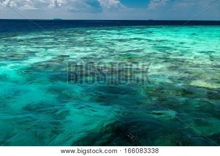 Transparent Azure Water With Coral Reef, Nature Landscape