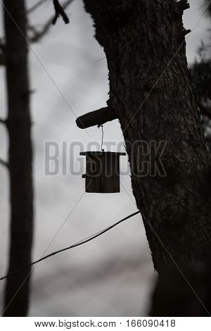 Balck Birdcage hanging on tree in Turkey.