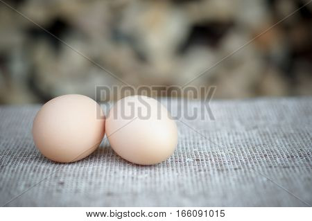 the fresh eggs from the chicken coop