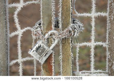 White Hoarfrost on a padlock and a chain