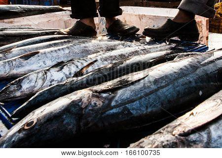 India Goa Fish market black shoes boots