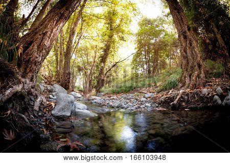 Krios River near Platres village. Limassol District Cyprus.
