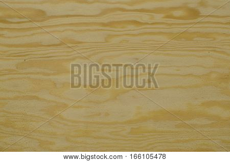 Focused texture of some piece of plywood