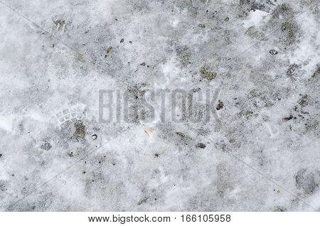 Focused texture of white fallen snow floor