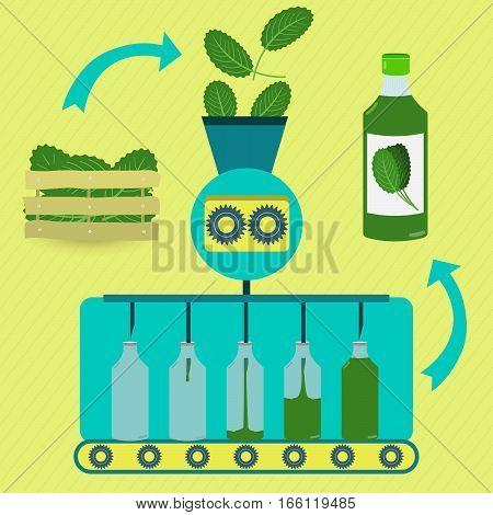Cabbage Juice Fabrication Process