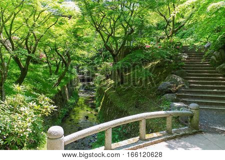 Park leisure tourism lake water bridge trees nature landscape