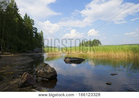 In the backwaters of the bay of Protective. Vyborg, Russia