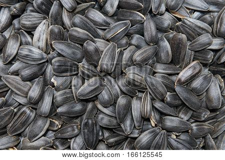 surface of the heap of dry black sunflower seeds
