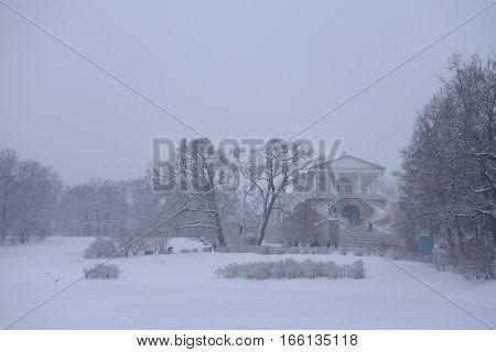Walk in the snowstorm January day in Catherine Park in Tsarskoye Selo Cameron gallery