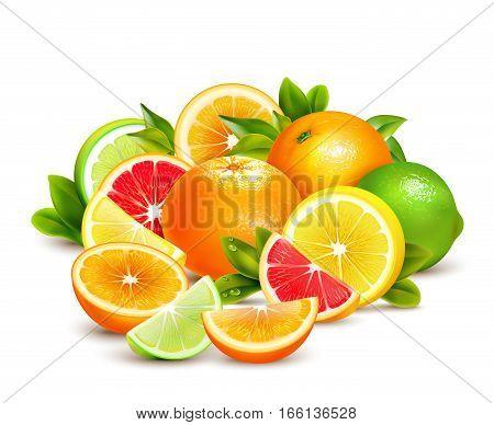 Citrus fruit whole halves and quarters colorful composition with lime lemon grapefruit and oranges realistic vector illustration