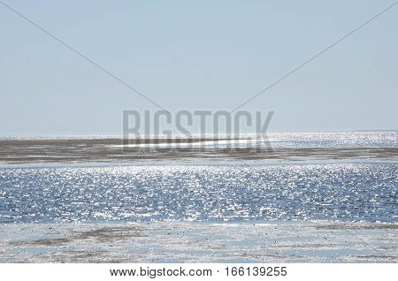 Summer at the wadden sea with blue sky, Denmark