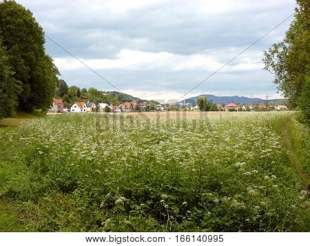 Photo of a small village next to a green field