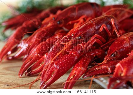 Boiled Crayfish On Wooden Table