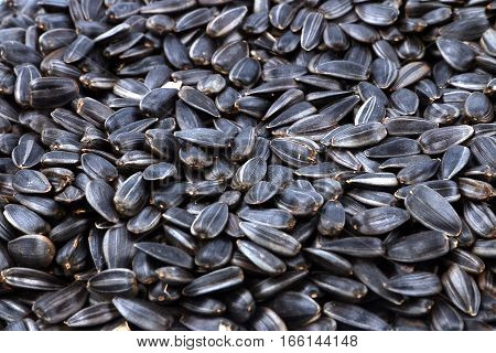 large fresh roasted sunflower seeds as part of the raw materials for the preparation of oil