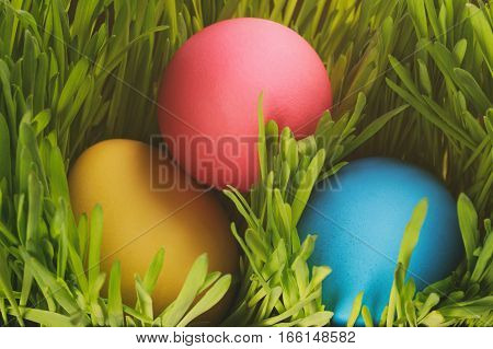 three colorful easter eggs in the grass, vintage toned photo