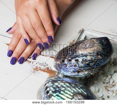 Beautiful Manicured Woman's Hands With Violet Nail Polish With Shells From The Sea