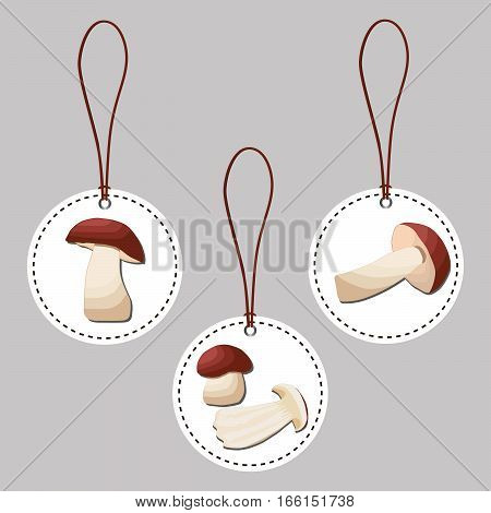 Abstract vector illustration of logo for whole ripe white mushroom porcini,cut sliced,product on background.Mushroom drawing consisting of tag label,twine rope,ripe food.Eating fresh porcini mushrooms