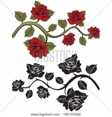 Flower Branch Roses. Set Of Red And Black  Branches. Floral Print. Ornament With .  Frame,  Card, Bo