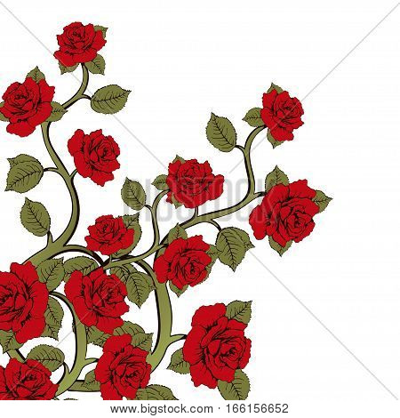 Flower Branch Roses, Bouquet Of Flowers. Ornament With Red Roses. Floral Print. Floral Frame, Flower