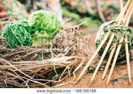 Bamboo sock needles and nest of green yarn ball. Concept of nature environmental friendly yarn shop