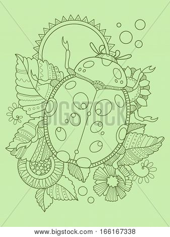 Ladybug color hand drawn vector illustration. Lace pattern