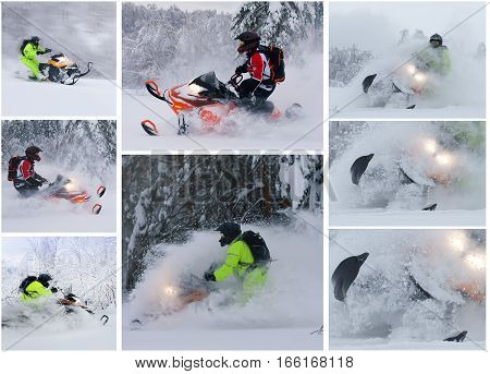 collage whith athlete on a snowmobile moving in the forest