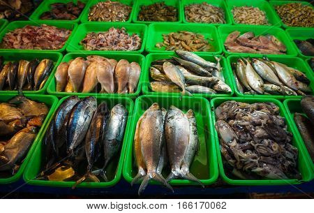 Saltwater fishes displayed on green plastic box photo taken in Jakarta Indonesia java