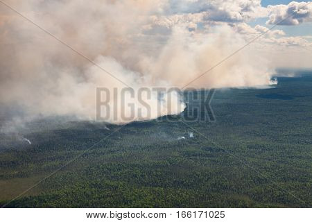 Aerial view of wildfire in forest in cloudy summer day.