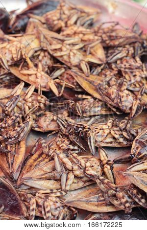 fried insects is delicious in the market