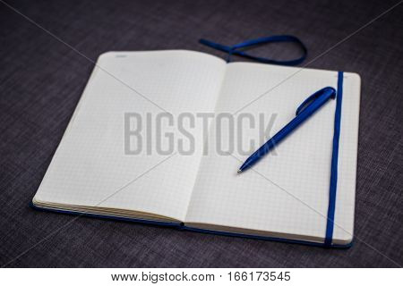 notebook opened to a blank sheet and a blue pen