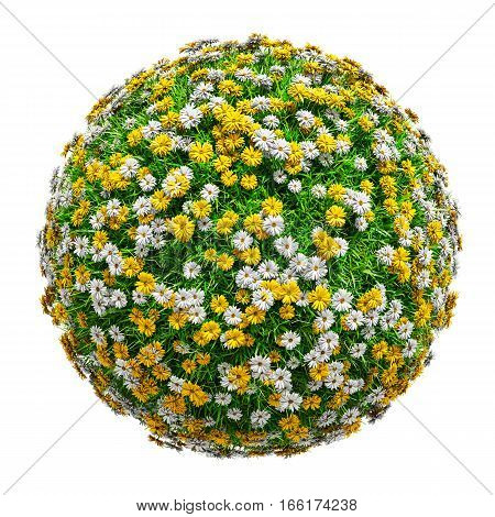 Natural grass arena with flowers isolated on white background. Arena for your design. The symbol of spring, environment, growth and nature. 3D illustration. Top view